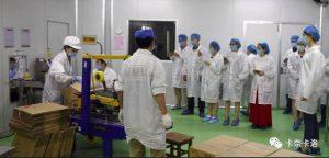 卡奈卡洛 工厂
